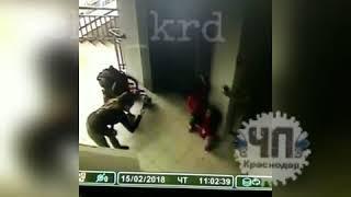 Девочка упала в лестничный пролет в ТРЦ в Сочи