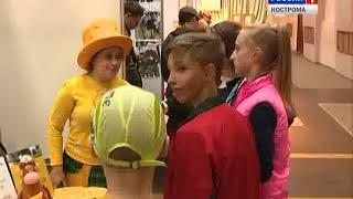 В Костроме открылся фестиваль летнего отдыха для детей