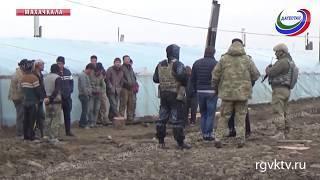 350 нелегальных мигрантов обнаружили во время рейда сотрудники МВД