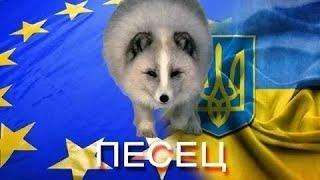 Почему Европа отвернулась от Украины