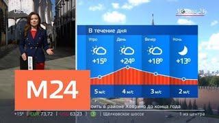 """""""Утро"""": повышенное атмосферное давление ожидается в Москве 25 июня - Москва 24"""