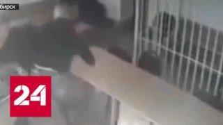 В Новосибирске осужденный за пьяное ДТП, пытаясь сбежать из суда, выпрыгнул в окно - Россия 24