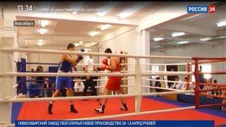 «Спортивная среда»: боксёрский турнир памяти Петра Горбатова в Новосибирске