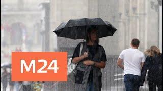 До конца дня в Москве будет дождливо и прохладно - Москва 24