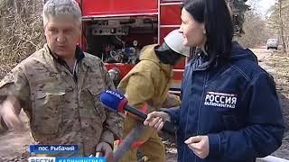 В Калининградской области бушует пожароопасный сезон