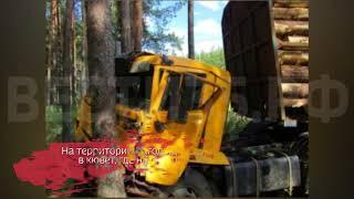 Водитель лесовоза на скорости врезался в дерево в Чагодощенском районе