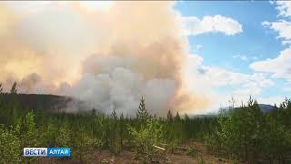 Грозы стали основной причиной лесных пожаров в Алтайском крае