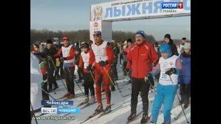 На «Лыжню России» в эти выходные вышли больше 60 тысяч жителей Чувашии