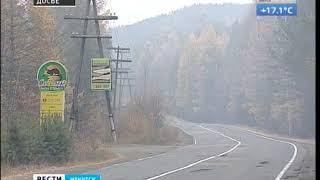 Самый большой «зелёный щит» в России создадут вокруг Иркутска