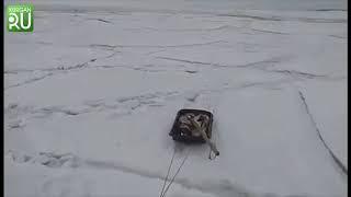 МЧС просит распространить жутковатое видео в назидание «бесстрашным» рыбакам