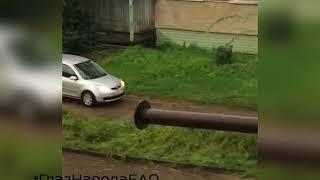 """ГлазНародаЕАО: """"Невское"""" озеро вынуждены объезжать по тротуару автовладельцы в Биробиджане"""