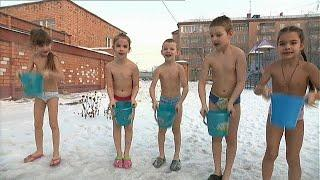 Юные сибирские моржата