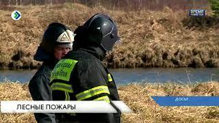 Планы лесопожарного центра Коми