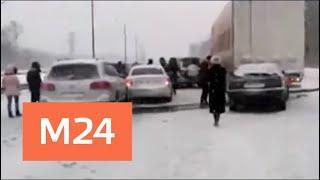 Пять ДТП произошли на трассе М-4 в Подмосковье - Москва 24