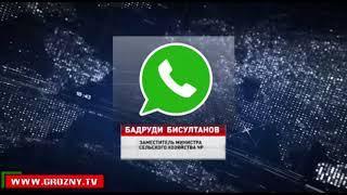 Чеченские бизнесмены готовятся к инвестиционному форуму в Сочи