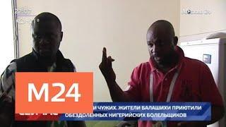 Десять нигерийских болельщиков оказались на улице в Балашихе - Москва 24