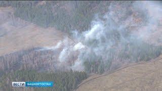 В южных районах Башкирии объявлен чрезвычайный класс пожароопасности