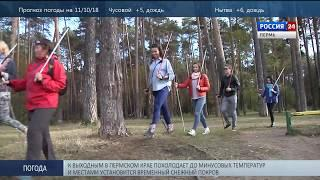 Палки в руки: в Перми пройдёт фестиваль скандинавской ходьбы