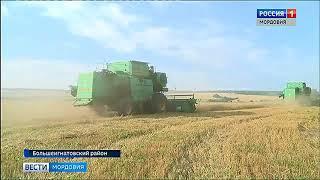 В Мордовии торопятся до дождей собрать урожай зерновых