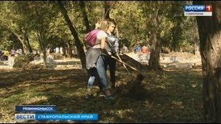 Креативные субботники прошли в ставропольских городах