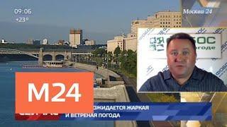 В Москве ожидается жаркая и ветреная погода - Москва 24