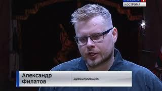 Зрители Костромского цирка первыми увидят новые трюки дрессированных медведей