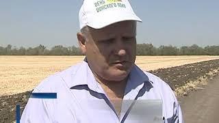 Жатва: на Дону собрали первые миллион тонн зерна