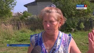 Костромские активисты ОНФ проверяют работу сельских ФАПов