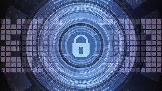 За информационную безопасность в Югре будет отвечать молодежь
