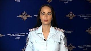 МВД России возбуждено уголовное дело в отношении участников организованного преступного сообщества