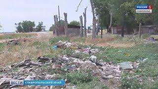 Реализацию нацпроекта «Экология» могут начать со Ставрополья