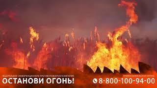 Причины лесного пожара
