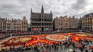 Брюссель в цветах