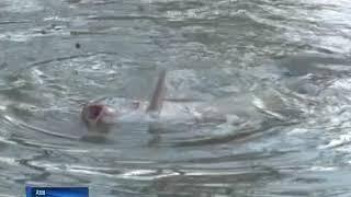 Заброшенный овраг в Азове стал прудом, где соревнуются рыбаки