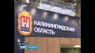 Итоги главного агропромышленного форума России «Золотая осень»