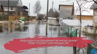 В Бабаево пришёл весенний паводок