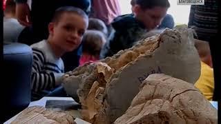 Благовещенским школьникам рассказали о динозаврах