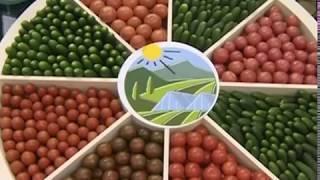 Ярославская область примет участие в агропромышленной выставке «Золотая осень - 2018»