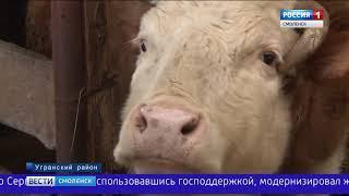 Фермеры смоленской глубинки воспользовались средствами госпрограммы