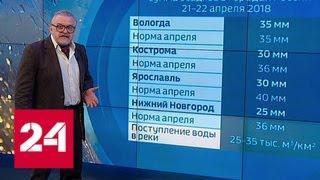 """""""Погода 24"""": на Москву идет шторм со снегом - Россия 24"""
