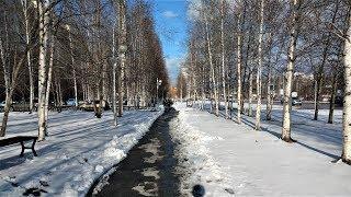 В Югре главным трендом соцсетей на этой неделе стали фото и видео с майскими снегопадами