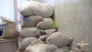 В Амурской области изъяли наркотические вещества в особо крупном размере