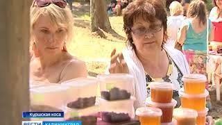На Куршской косе прошёл праздник мёда