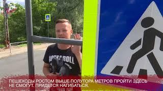 В Петрозаводске средь бела дня вырубили лес