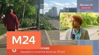 Синоптики предупредили о второй волне шторма в Москве - Москва 24