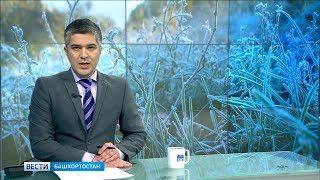 В Башкирии МЧС предупреждает о заморозках