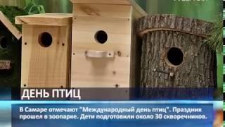В Самаре отмечают Международный день птиц