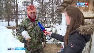 В Ненецком округе решается судьба медвежонка-сироты