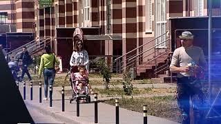 Алексей Силанов: «Более 20% школьников Калининграда учатся во вторую смену»