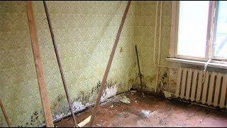 «Нехорошая» квартира в Ханты-Мансийске испортила жизнь всему дому